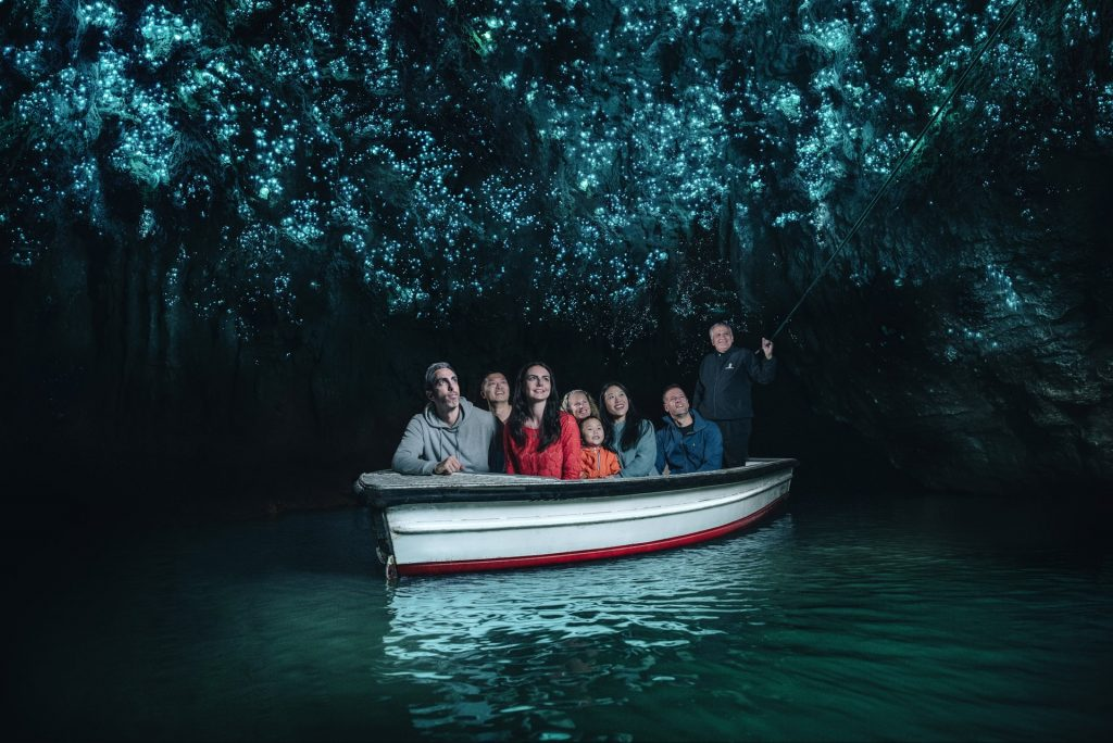 Waitomo Caves (Credit Vaughan Brookfield)