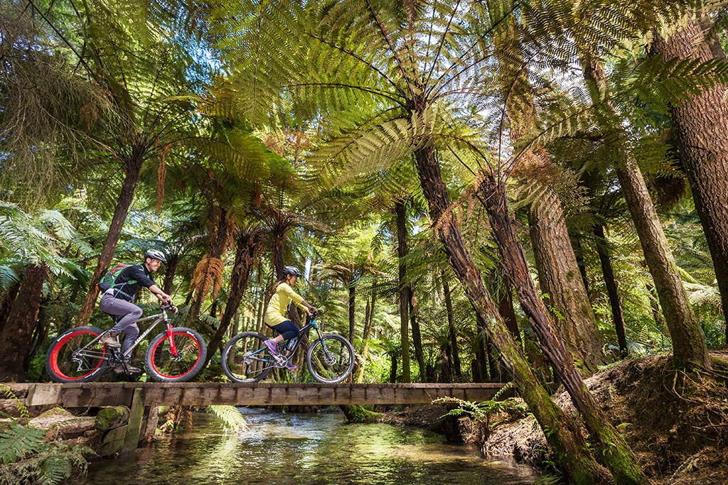 free-things-to-do-in-rotorua-mountain-biking