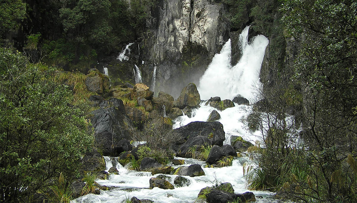 Rotorua-walks-and-Attractions-Tarawera-Falls-Walking-Track