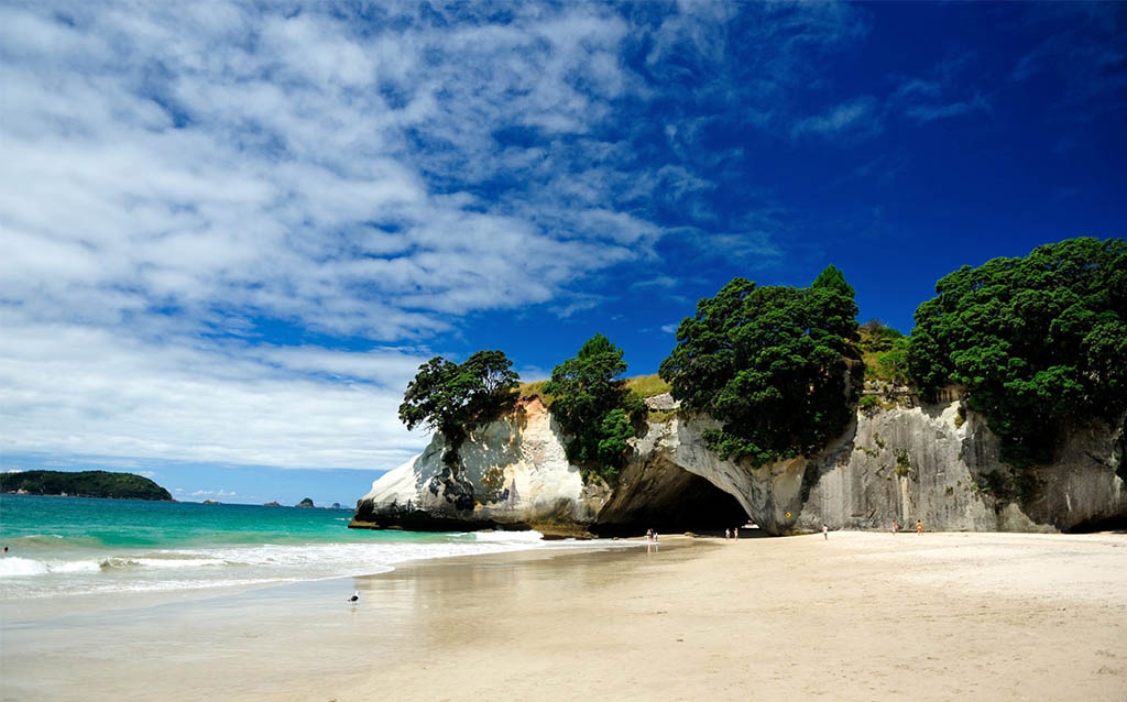 ultimate-backpacker-guide-cathedral-cove-coromandel