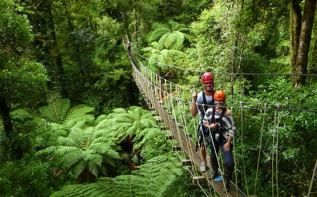 rotorua-canopy-tours-summer-swing-bridge