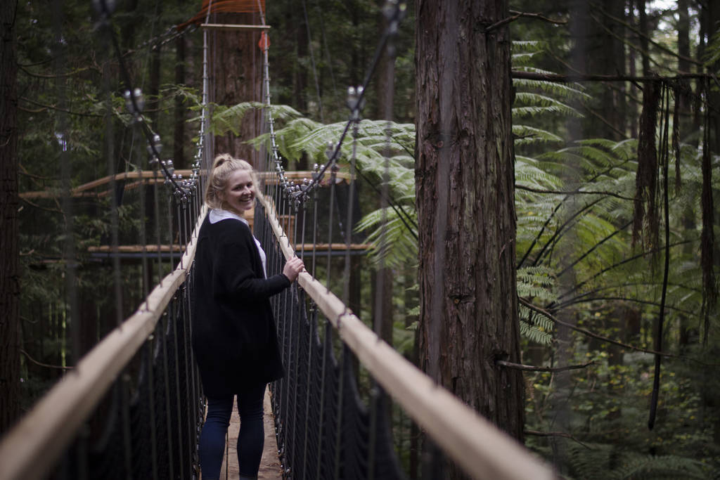 What to do in Rotorua - Redwoods Forest Tree Walk