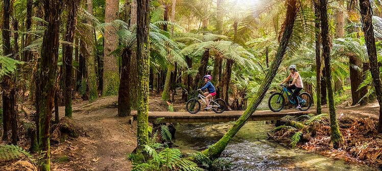 Te Ara Ahi biking outdoor activity