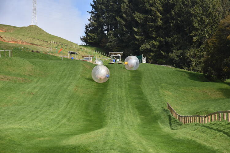ultimate New Zealand bucket list Zorb