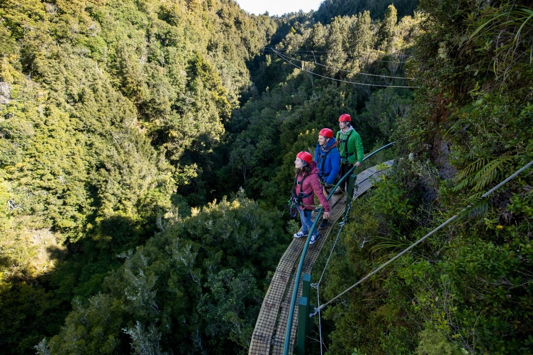 Best zipline in New Zealand - Rotorua Canopy Tours